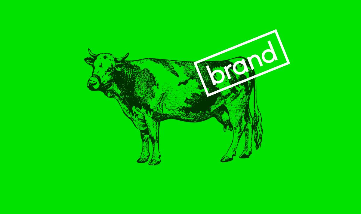 Branding Agency Yorkshire